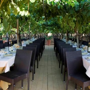 vineyard venue 1