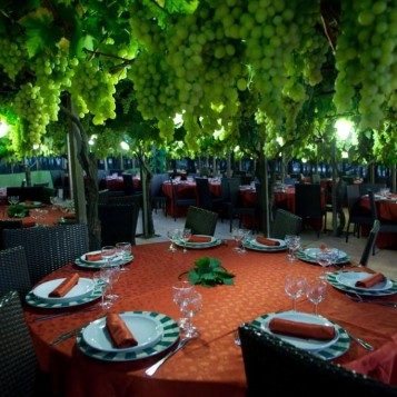vineyard venue 3