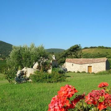vineyard venue sardinia 5